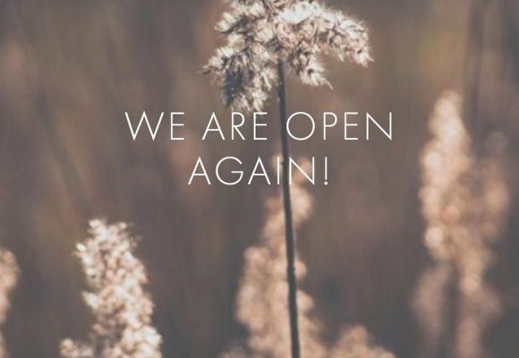 'we are open again' photo